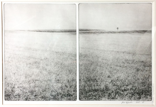 Windmill in Spring, a photogravure diptych